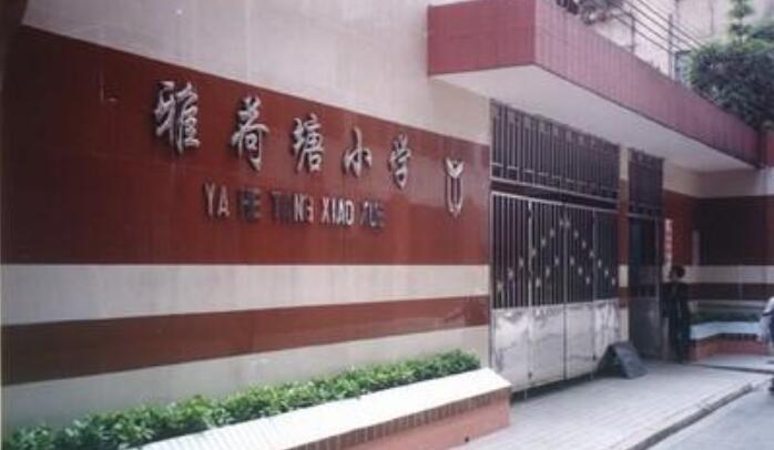广州越秀区雅荷塘小学图片