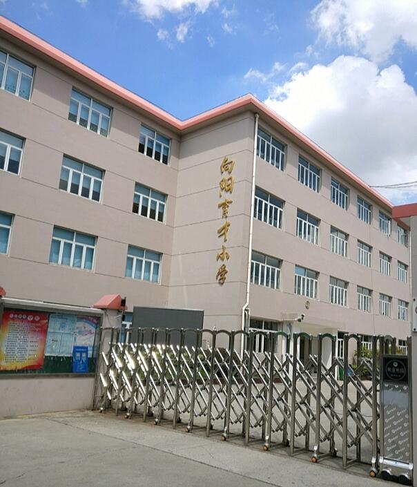 上海徐汇区向阳育才小学图片