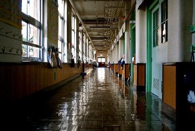 广州第八十一中学初中 部图片