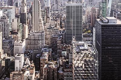 2020年上海嘉定区初中招生范围图片